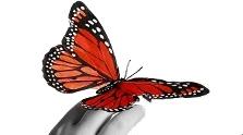 Gabinet Psychoterapii – Marzena Defler logo